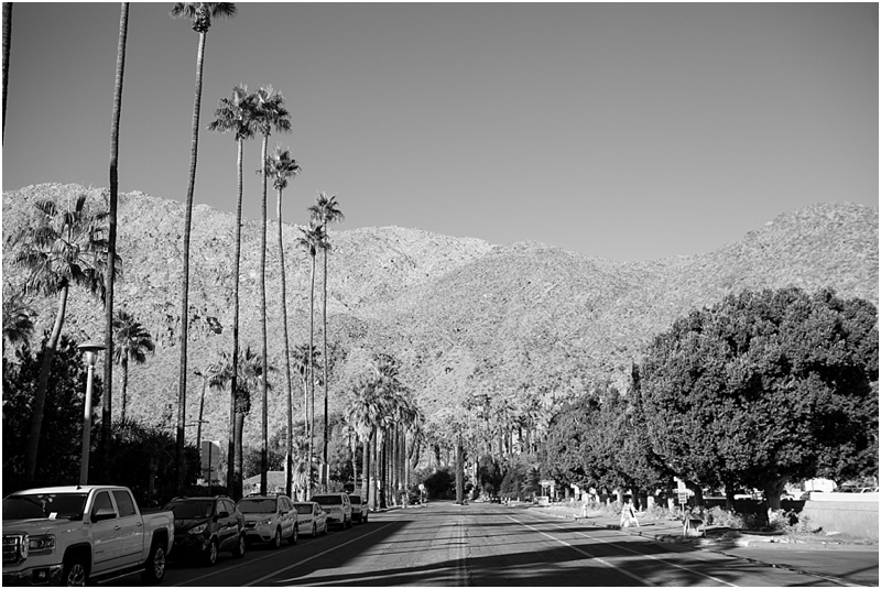 Palm Springs, CA - Natalie Probst Photography